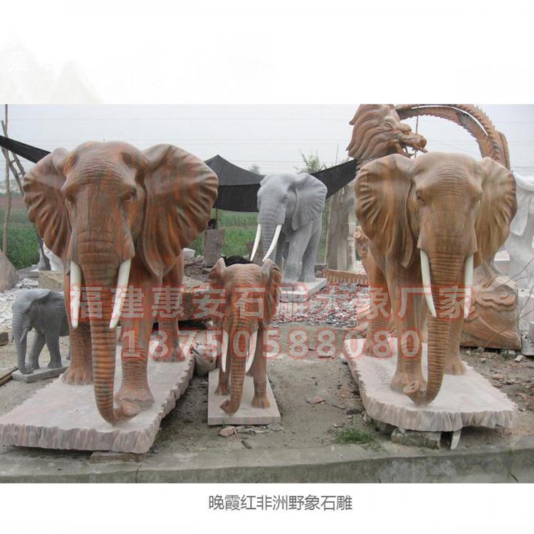 晚霞红大象,晚霞红石雕大象图片,石雕招财象